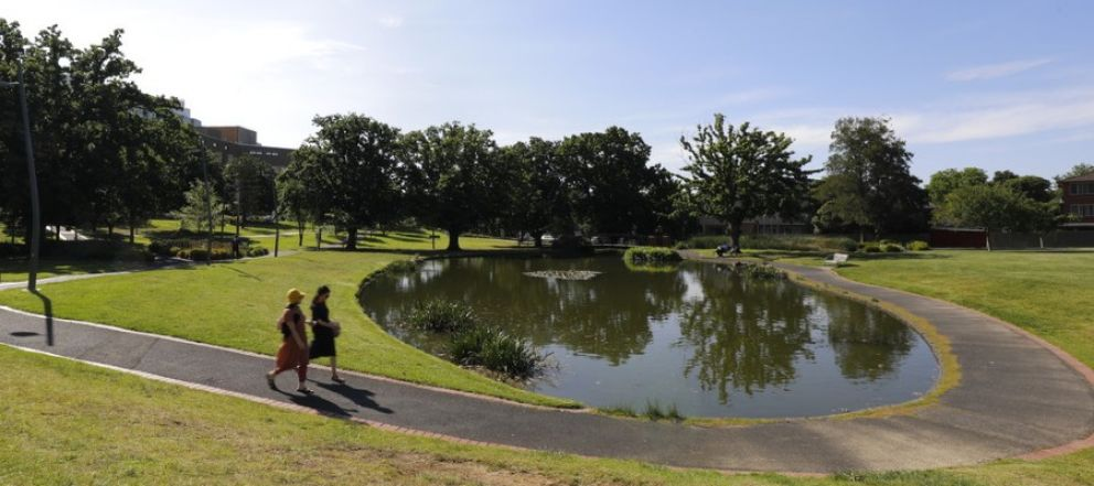 Two people walking beside a pond in a Box Hill park.