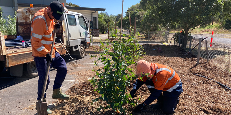 Image of two people in high vis planting a tree